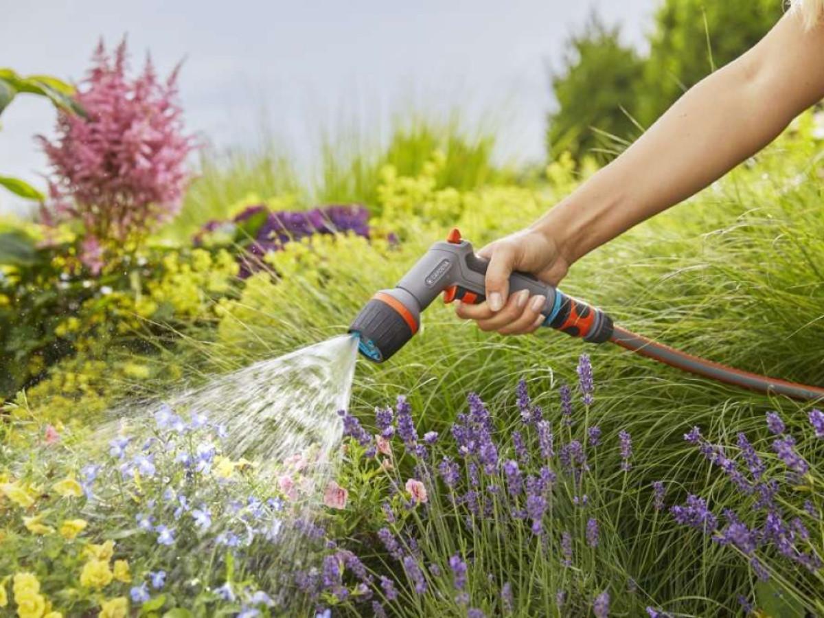 Как поливать растения
